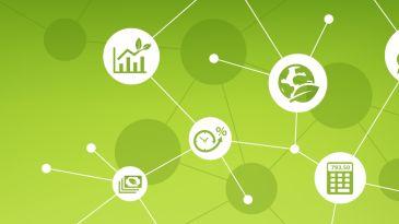 Green è bello: i quattro trend della sostenibilità