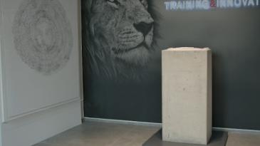 Le artiste Barba e Favaretto entrano nella collezione di Banca Generali